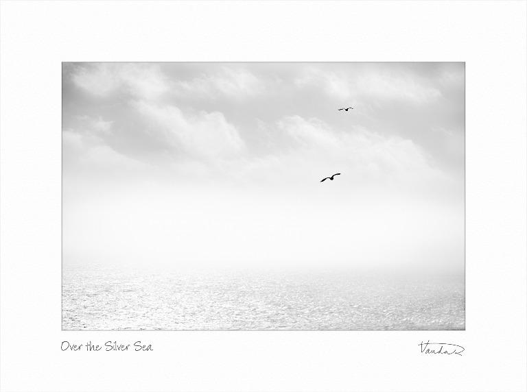 Over the Silver Sea