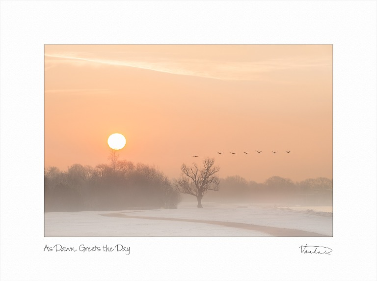 As Dawn Greets The Day