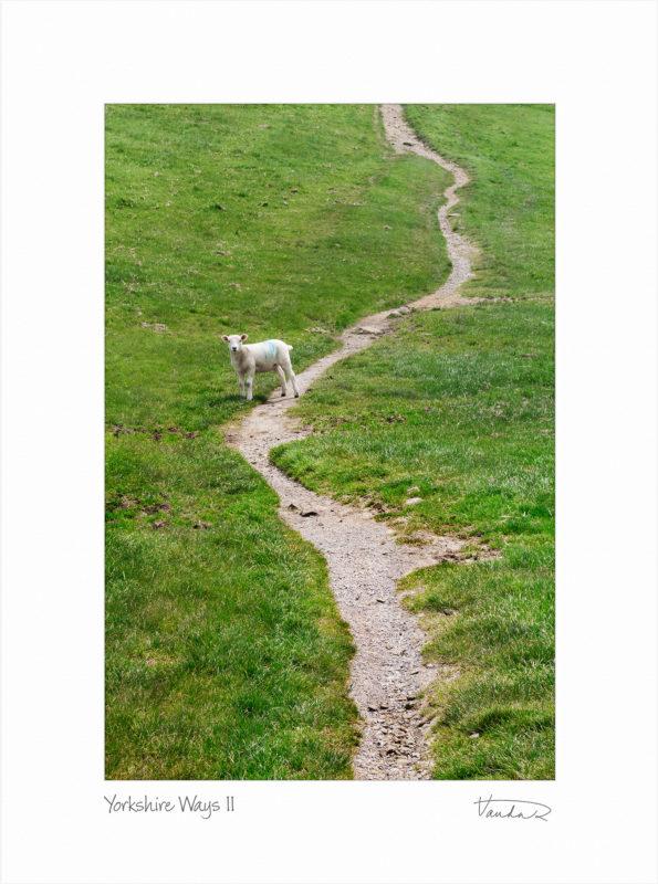 Yorkshire Ways II