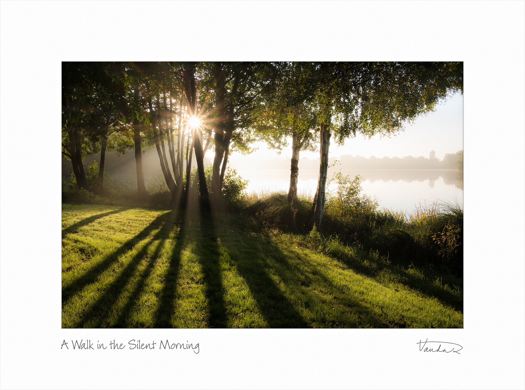 A Walk in the Silent Morning