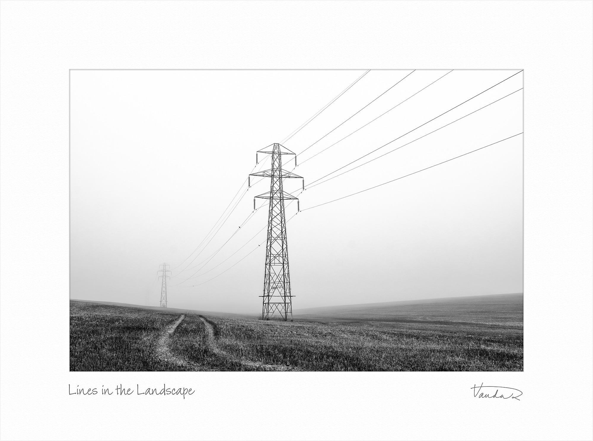 Lines in the Landscape