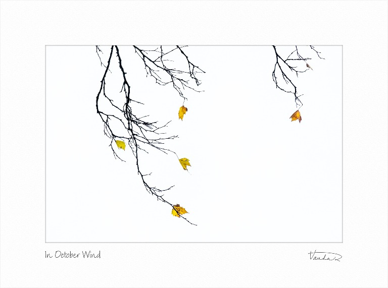 In October Wind