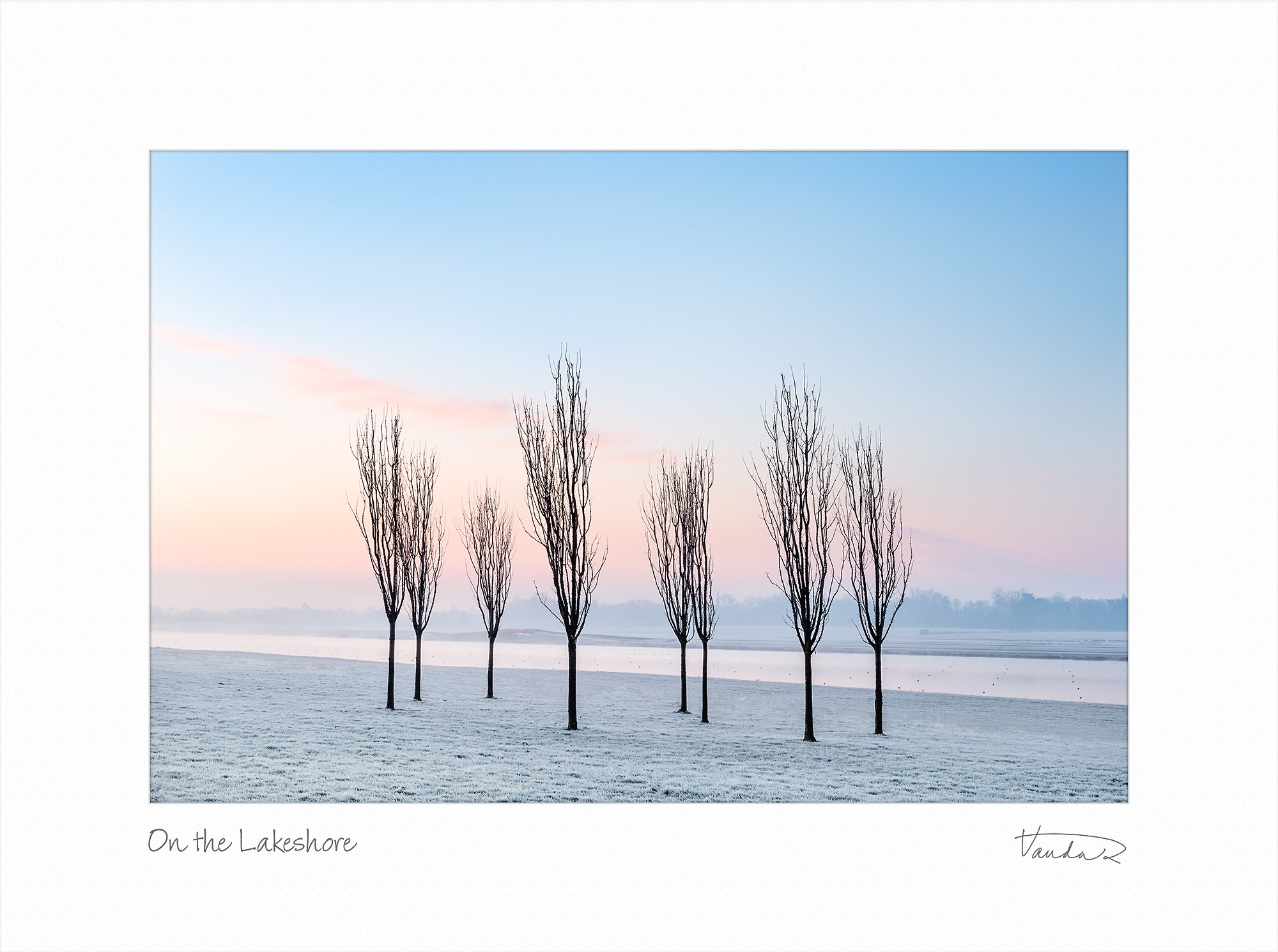 On the Lakeshore