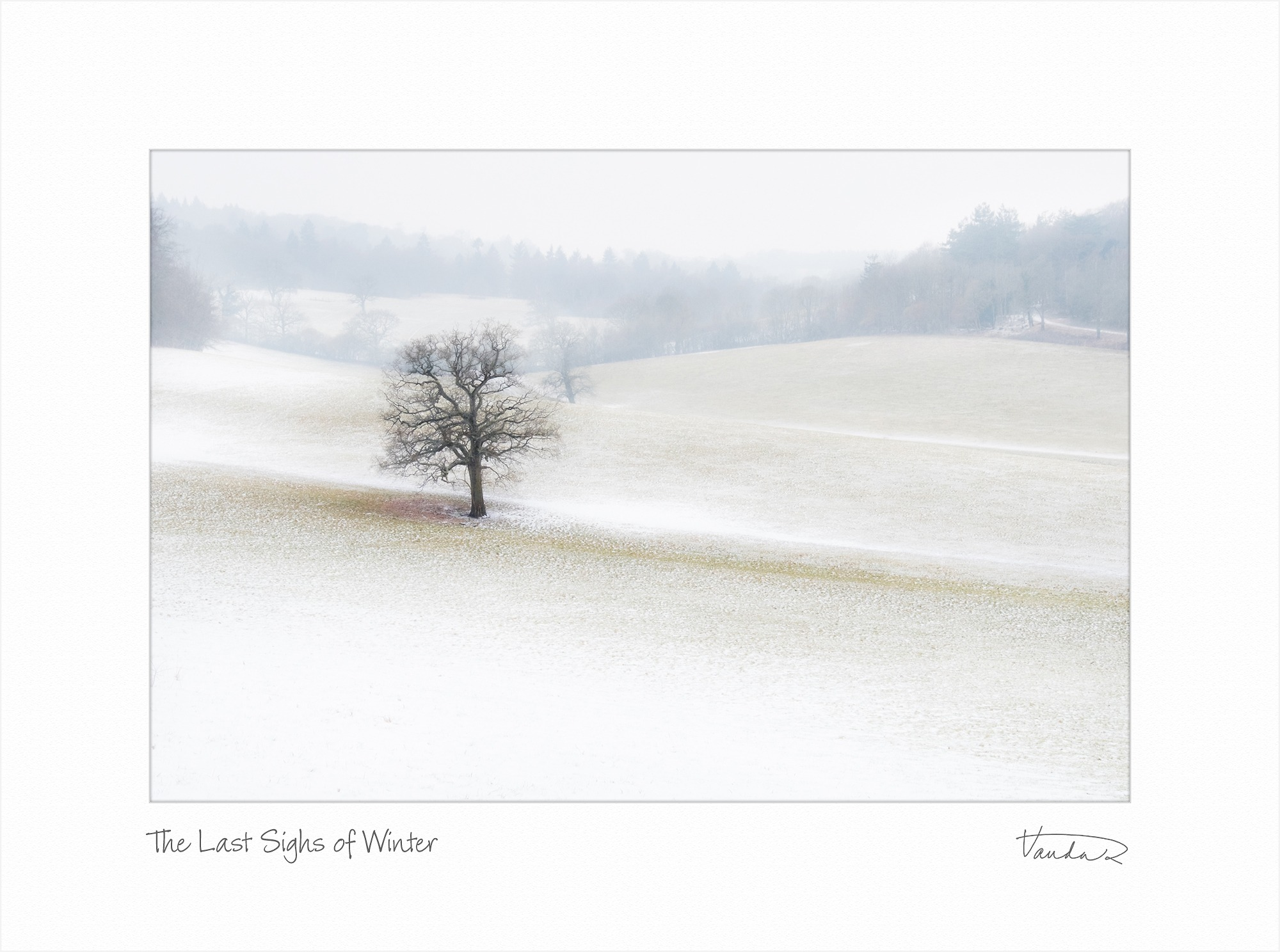 The Last Sighs of Winter